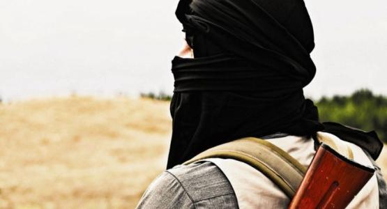 Boek 'Nederlandse jihadisten' doet stof opwaaien