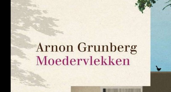 Birthmarks by Arnon Grunberg shortlisted for the Libris Literature Prize 2017