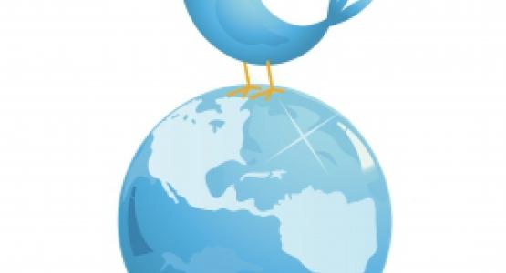 Moon heeft bijna 1000 volgers op Twitter!