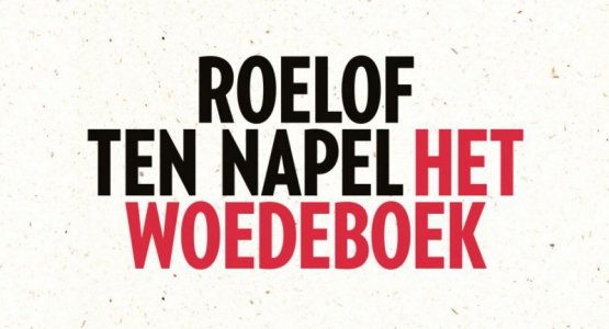 Roelof ten Napel wint de Grote Poëzieprijs Jongerenjury 2019