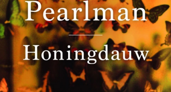 Edith Pearlman op de longlist van de National Book Award 2015