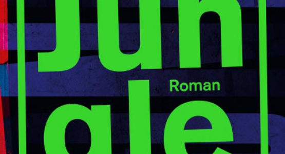 Pers laaiend enthousiast over nieuwe roman Joost Vandecasteele