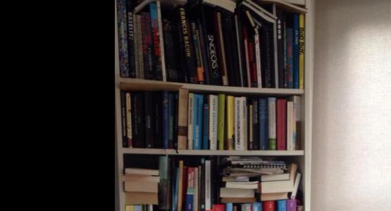 De boekenkast van... Jonah Falke