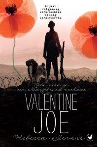 Paperback: Valentine Joe - Rebecca Stevens