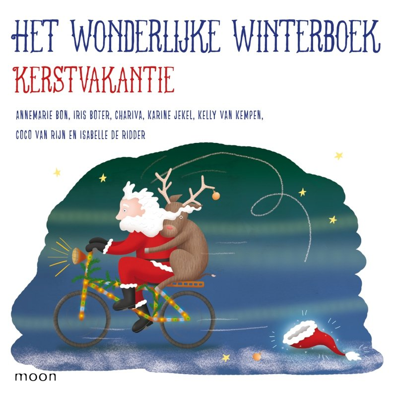 Diverse auteurs - Het wonderlijke winterboek - Kerstvakantie